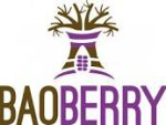 baoberry logo